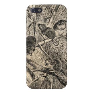Plantilla retra de los ratones del ratón de cosech iPhone 5 fundas