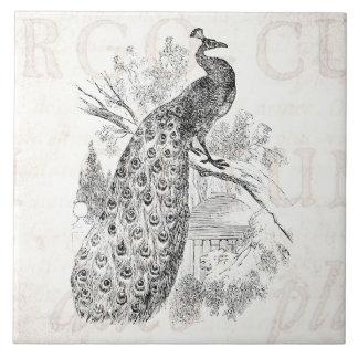 Plantilla retra del ejemplo del pavo real de los 1 azulejos cerámicos