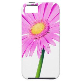 Plantilla rosada de la margarita - modificada para iPhone 5 fundas