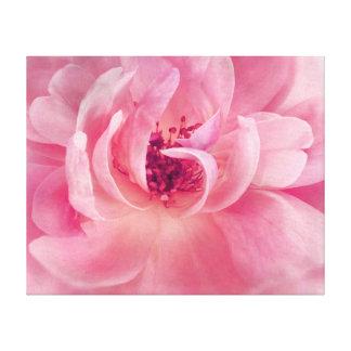 Plantilla subió jardín rosado del fondo de Bokeh Impresion De Lienzo