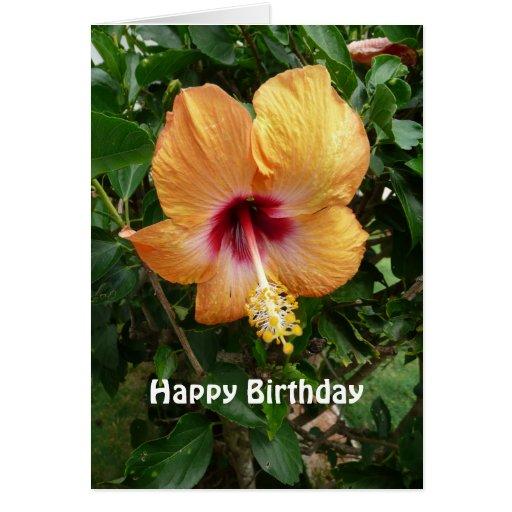 Plantilla tropical del cumpleaños de la flor del h tarjeta de felicitación