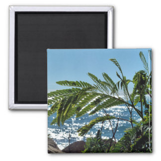 Plants and blue sea magnet