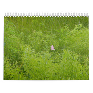 Plants and trees calendar