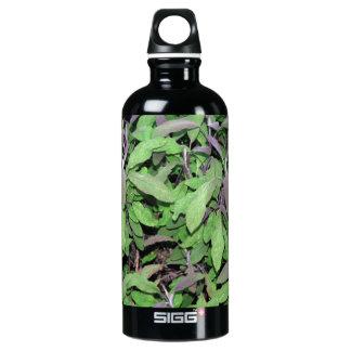 Plants Dark Red and Green SIGG Traveler 0.6L Water Bottle