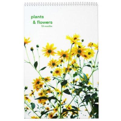 plants & flowers calendar