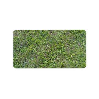 Plants Growing On Green Grassy Landscape Label
