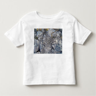 Plants Growing On Lava Rocky Surface Toddler T-shirt
