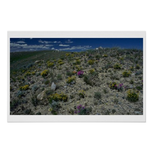 Plants In Heat Poster