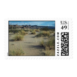 Plants In Sand Postage Stamp