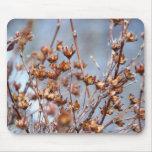 plants mouse pad