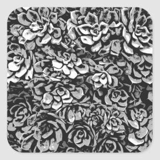 Plants of Black And White Square Sticker