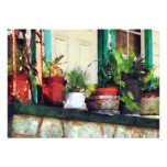 Plants on Porch Personalized Announcement