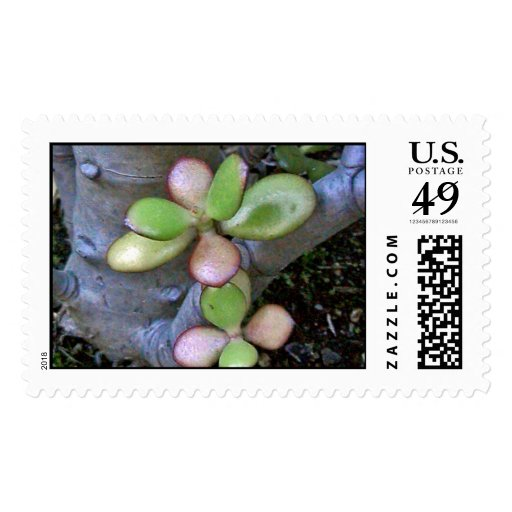 Plants Postage Stamps