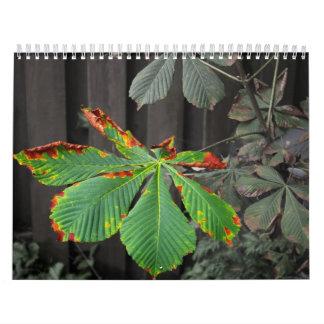 Plants Calendar