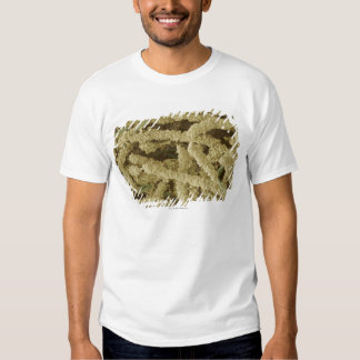 Plaque-forming bacteria, coloured scanning 2 t-shirt
