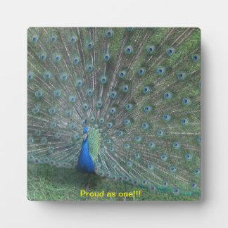 Plaque, Peacock, Birds,with caption Plaque