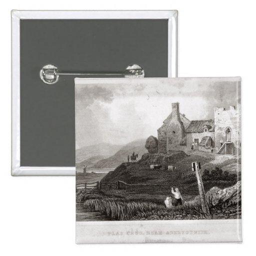 Plas Crug, cerca de Aberystwyth, Cardiganshire (et Pins