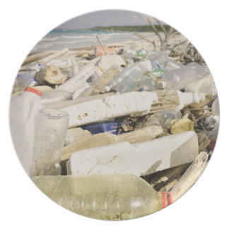 Plastic bottles and ocean dumping on a tropical plate
