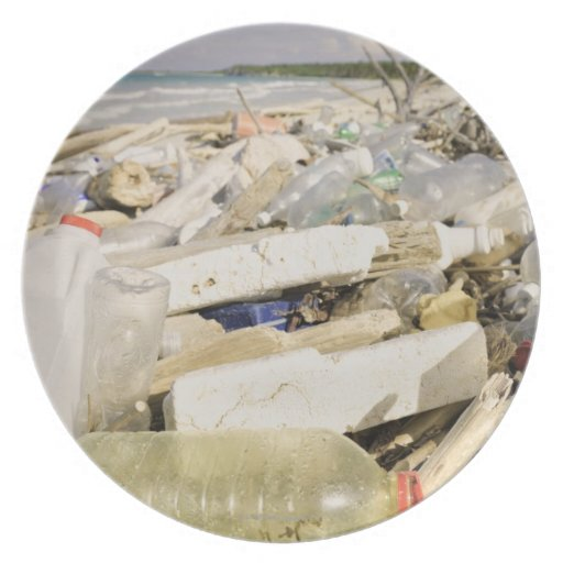 Plastic bottles and ocean dumping on a tropical party plates