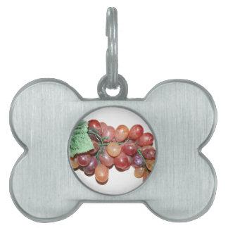 plastic fake grape food image pet ID tag