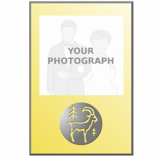 Plata del premio de la muestra de la estrella del fotoescultura vertical