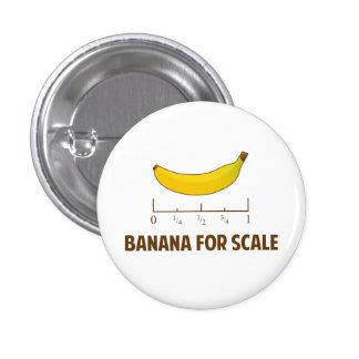 Plátano para la escala pin redondo 2,5 cm
