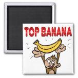 Plátano superior imanes para frigoríficos