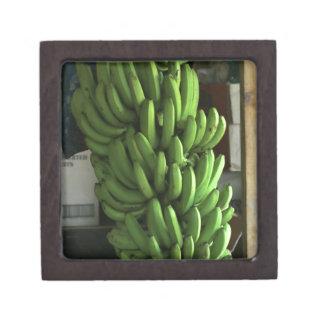 Plátanos verdes cajas de recuerdo de calidad