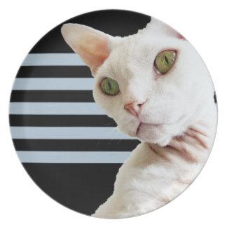Plate 2 | Black Grey Stripes | White Devon Rex Cat