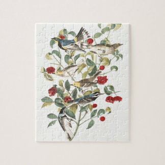 Plate 395 Audubon Warbler Jigsaw Puzzle