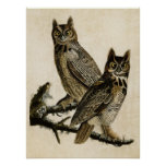 Plate 61   Great Horned Owl   Birds of America Posters