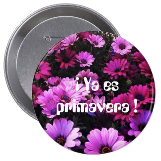 Plate already is spring pinback button