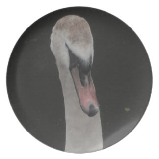 Plate Baby Swan Face