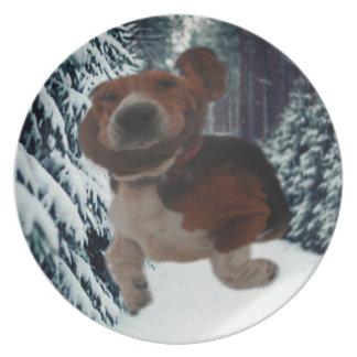 Plate Basset Hound Ear Scarf