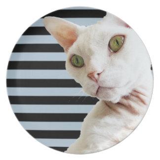 Plate | Black Grey Stripes | White Devon Rex Cat