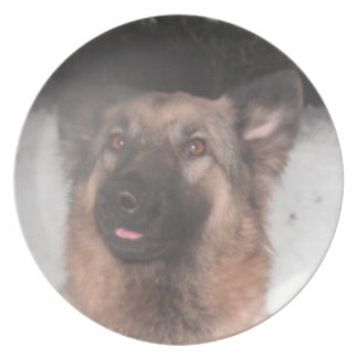 Plate German Shepherd Sticking Tongue Out