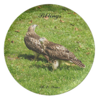 Plate/ Hawk/ Siblings by: R. E. Weiss Dinner Plates