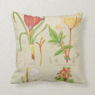 Plate I Botanical Home Decor Throw Pillow