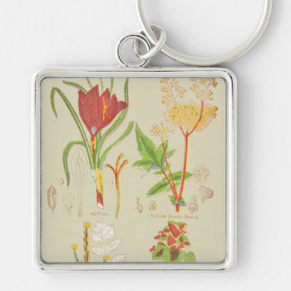 Plate I Botanical Keychain