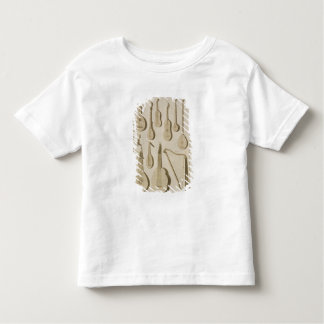 Plate III: Ancient and modern stringed and plucked Toddler T-shirt