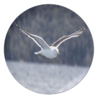 Plate melamine Gull #1