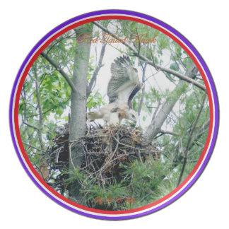 Plate/ nesting Red Tailed Hawks Melamine Plate