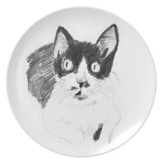 Plate of monochrome cat