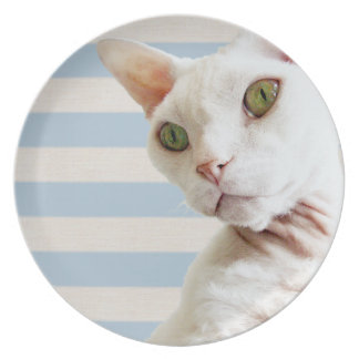 Plate | Pale Blue and beige Stripes| Rex Cat