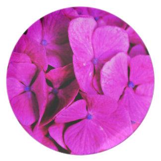 Plate~Pink Explode Design Melamine Plate