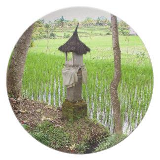 Plate | Rice field Temple | Ubud Bali Indonesia