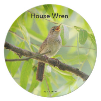 Plate showing a house wren in song.