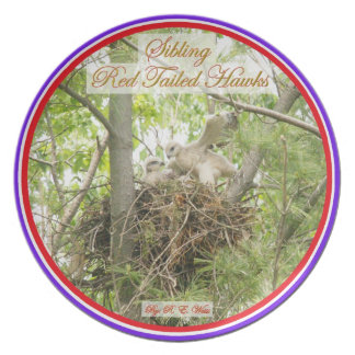 Plate/ Sibling Red Tailed Hawks Party Plate