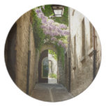 PLATE - St Remy Provence France