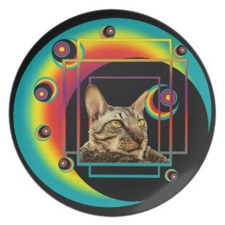 Plate | Tiger Cat Orbs